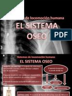 Tema 1 Sistema Oseo