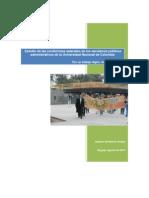 Documento Integrado SPAUN 8 de Agosto de 2013-LSA PDF