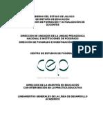 Ok Lineamientos Generales de Desarrollo Academico