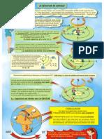 FP16-Coriolis-08.pdf