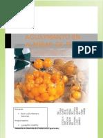 Aguaymanto Monografia r