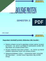 Biokimia Metabolisme Protein