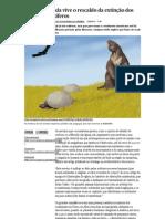 Amazónia ainda vive o rescaldo da extinção dos grandes mamíferos - PÚBLICO