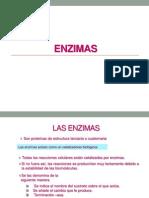 Bioquimica_-_Enzimas