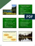 Emprendimiento Diapositivas 20 a 46[1] Copy