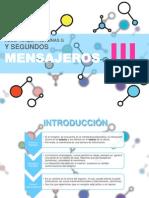 III. Receptores, proteínas G y segundos mensajeros