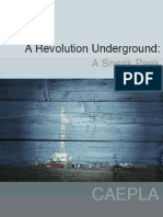 A Revolution Underground - A Sneak Peek