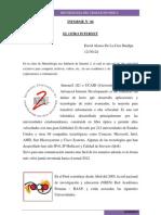 informe 6 quinua