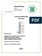 Plan de Marketing NercarLu
