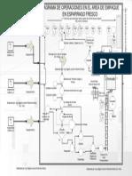 Gestion de Produccion en Un Diagrama de Operacion Esparrago