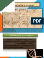 La Genetica Humana