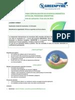 Formulario Para Aplicar CII Greenpyme Eficiencia Energetica