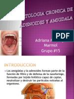 Patologia Cronica de Adenoides y Amigdala