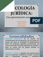 PSICOLOGÍA JURÍDICA-expo