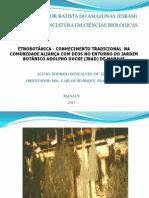 Cópia de Slides_Projeto e monografia Etnobotanica