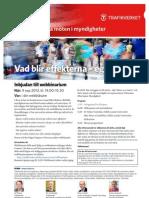 Inbj_REMM-webbinarium_130909 (2)