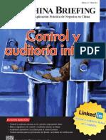 Control y auditoria interna (CB 2012/03)
