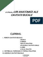 Structuri Anatomice Ale Cavitatii Bucale