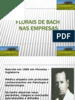 Florais de Bach Nas Empresas
