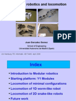 Modular Robotics and Locomotion. Hamburg 2006