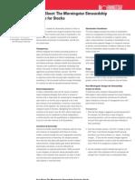 Morningstar Stewardship Grade Stocks factsheet