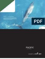 Pacific, Textos Criticos