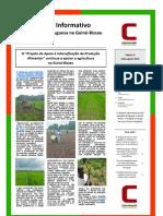 Boletim Informativo da Cooperação Portuguesa na Guiné-Bissau julho-agosto 2013