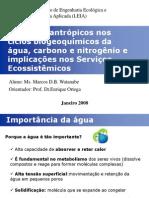CiclosAguaCarbonoNitrogenio_Ciclos e processos de transformação na Biosfera - Unicamp