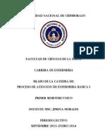 Silabo Pae Basica 1-2013