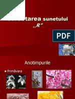corectareasunetului_rnou