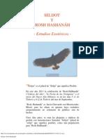 Selijot y Rosh Hashan�h.pdf