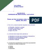 Guía Comp Medio Natural Las Plantas  Agosto(YO)