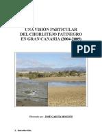 chorlitejo patinegro estudio 2004_2009