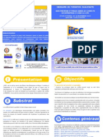 Argumentaire Seminaire IIGC Session28 OCT