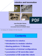Modular Robotics and Locomotion. Students seminar. Hamburg 2006