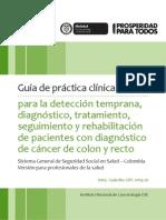 Guía para la detección temprana, diagnóstico, tratamiento, seguimiento y rehabilitación de pacientes con diagnóstico de cáncer de colon y recto