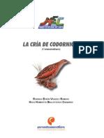 CodornicesNo1