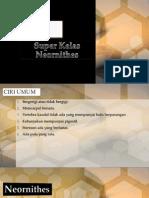 Neornithes