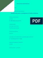 Proyecto de Grass Definitivo 2013
