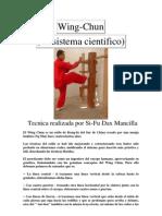 Tecnicas de Wing Chun
