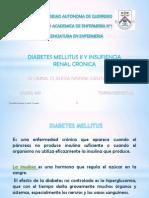 Diabetes_Mellitus_Claudia_Ivonne_Cantú_Tomás - copia