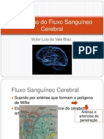Regulação do Fluxo Sanguíneo Cerebral