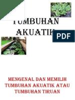 tumbuhan akuatik