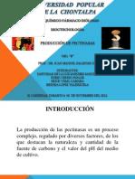PRODUCCIÓN DE PECTINASAS 100