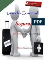COMERCIAL SEGUROS-AYALA TANDAZO JOSÉ EDUARDO