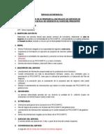 Terminos de Referencia Consultor Apalin