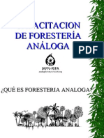 FORESTERIA ANALOGA CONCEPTOS