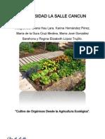Ecologia, cultivo orgánico DEFINITIVO