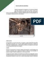 EXPLOTACIÓN POR CHIMENEAS.docx