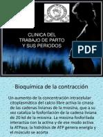 Clinica Del Trabajo de Parto y Sus Periodos2